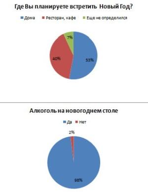 Где и как киевляне встретят новый 2012 год - опрос о Дарынка