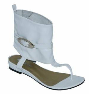 Wildcat обувь